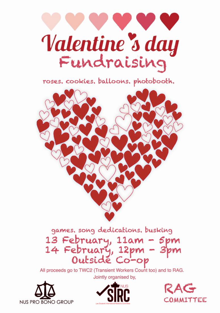 vdayfundraising2014